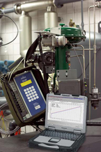 Emerson Process Management :: FoodProcessing