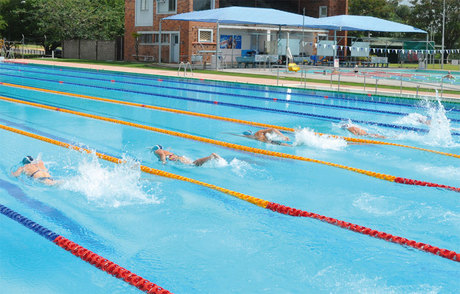 Rockhampton memorial pool swimmers in action