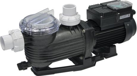 Pentair Pantera Evolution dual-speed pool pump