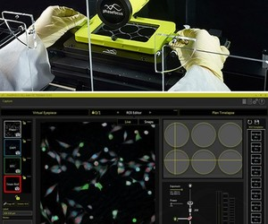 Phase phocus livecyte wfm