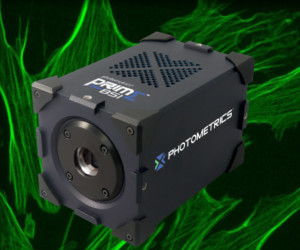 Photometrics prime bsi scmos camera