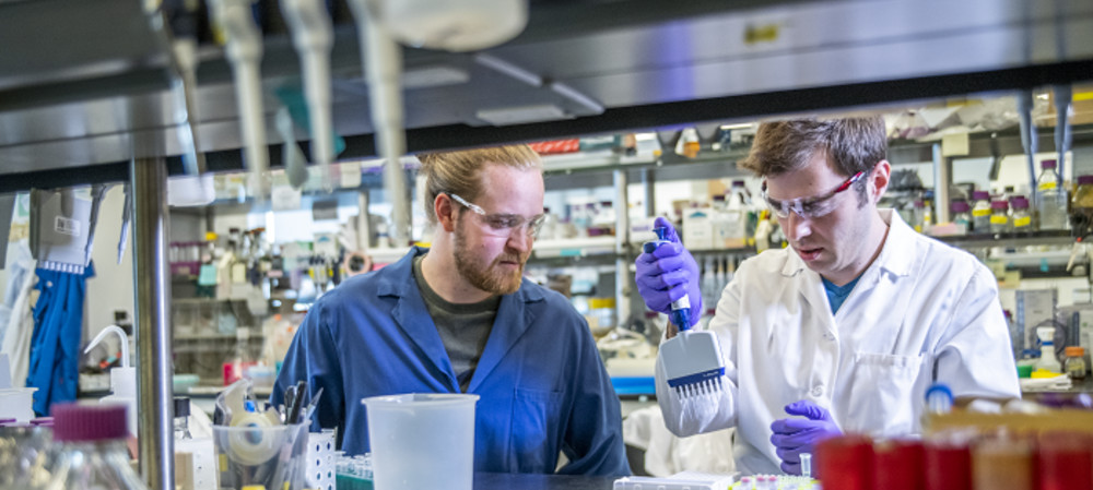 Enzymes enable faster, cheaper, more accurate DNA synthesis