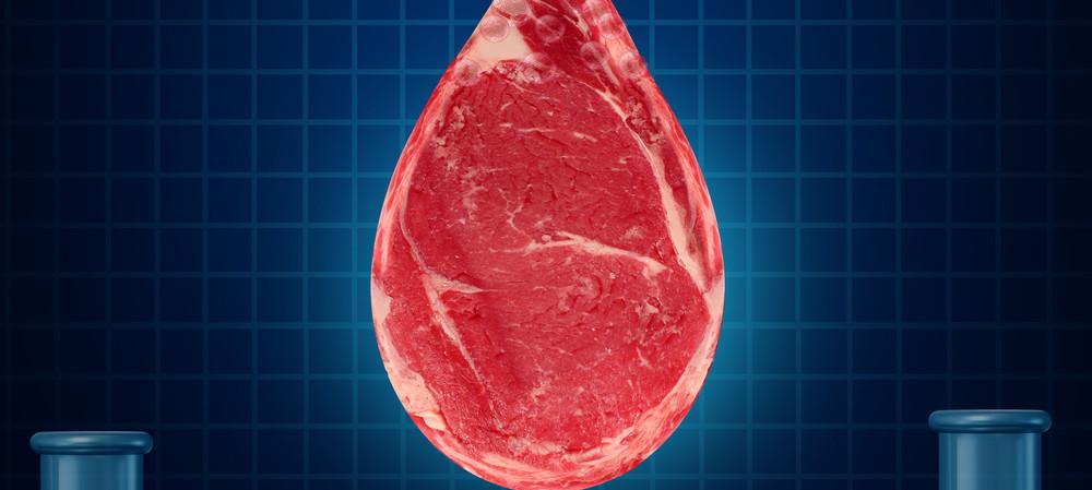 The US's 'clean meat' regulation war