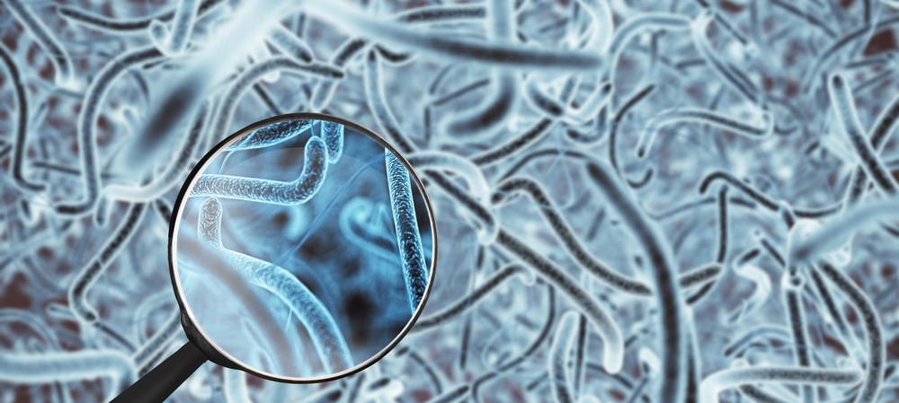Could Australia's microbiome contain new antibiotics?