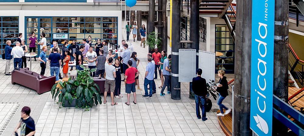 Cicada wants in on Sydney tech hub project