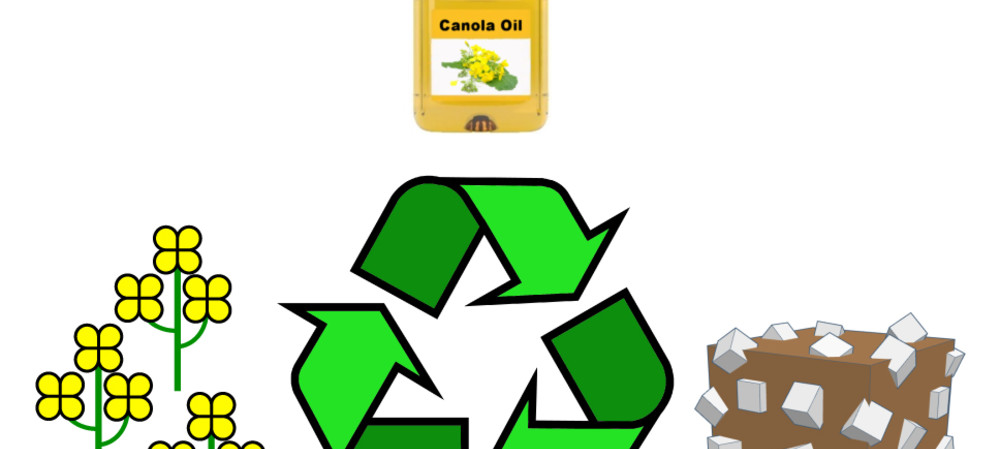 Recycling cooking oil to grow more food