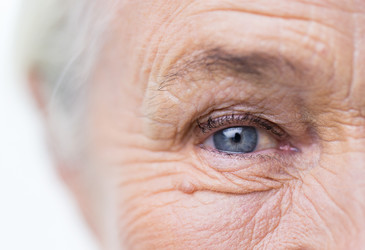 Anti-ageing research under the spotlight