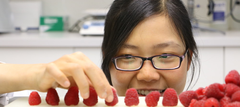 Improving the shelf life of raspberries
