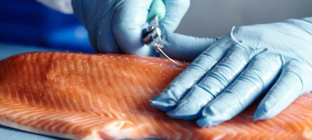 Automated pin-boning project for NZ King Salmon