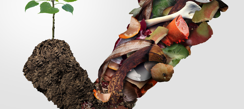 AWRE tackles the topic of food waste