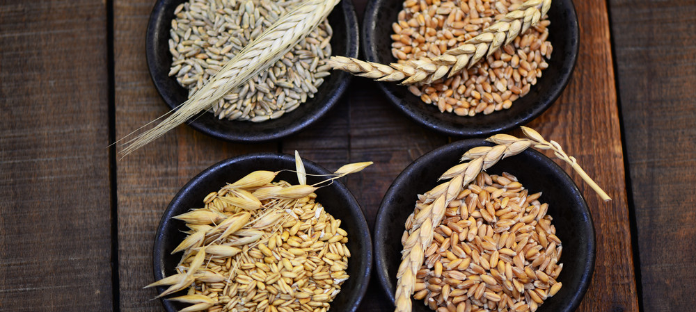 Science catches gluten in the rye