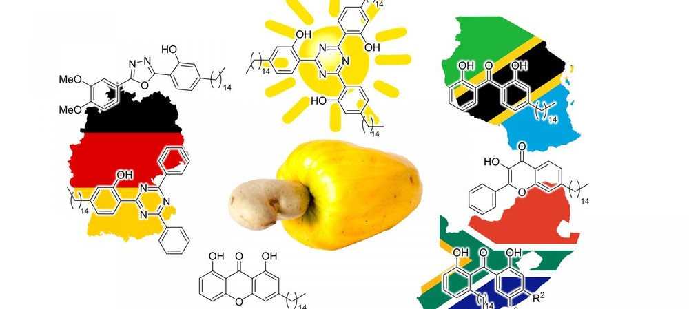 Wood chemistry turns nut shells into sunscreen