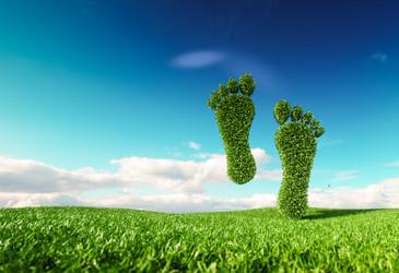 Reducing the HVAC&R carbon footprint