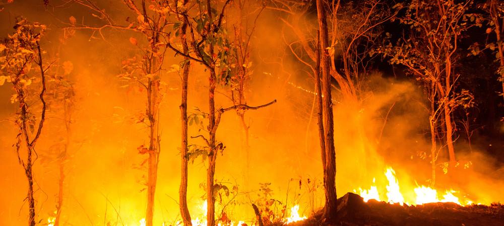 Confirmed: climate change increases bushfire risk
