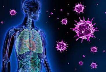 Childhood flu exposure impacts future susceptibility