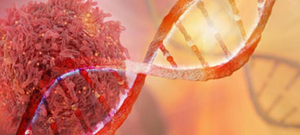 Genetic 'fingerprints' behind cancer drivers identified