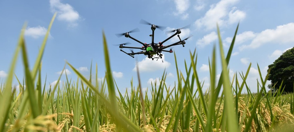 Technologies that could transform our food systems