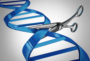 Gene editing on demand: fast, precise and activated by light