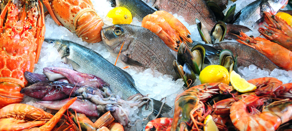 Seafood supplier achieves oceans of savings with freezer tech