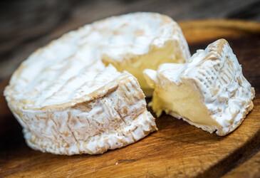 <em>Penicillium camemberti</em>: a history of domestication on cheese &nbsp;