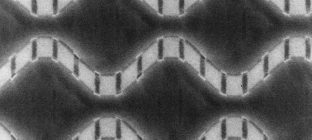 Fully integrated quantum processor created