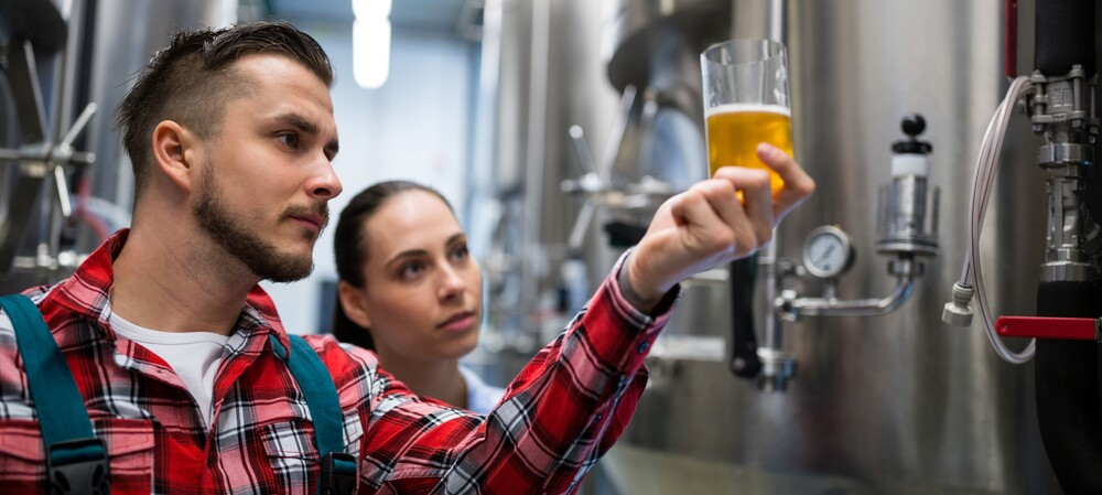 The craft of digital brewing